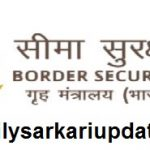 BSF Group C Post Online Form 2021